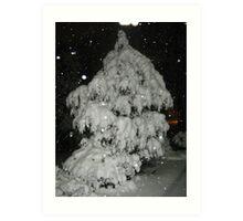 Feb. 19 2012 Snowstorm 51 Art Print