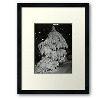Feb. 19 2012 Snowstorm 51 Framed Print