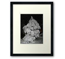 Feb. 19 2012 Snowstorm 52 Framed Print