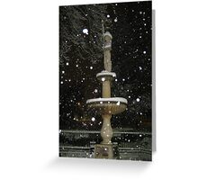 Feb. 19 2012 Snowstorm 54 Greeting Card