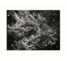 Feb. 19 2012 Snowstorm 55 Art Print