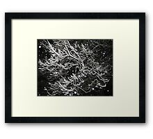 Feb. 19 2012 Snowstorm 55 Framed Print