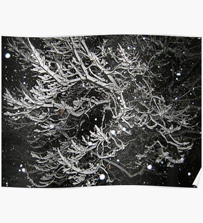 Feb. 19 2012 Snowstorm 55 Poster