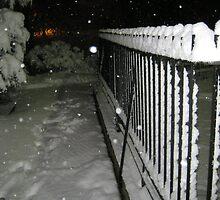 Feb. 19 2012 Snowstorm 56 by dge357