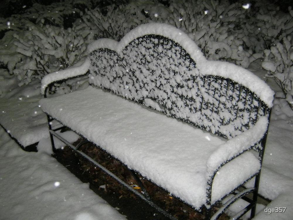 Feb. 19 2012 Snowstorm 57 by dge357