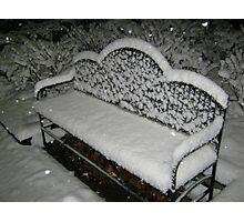 Feb. 19 2012 Snowstorm 57 Photographic Print