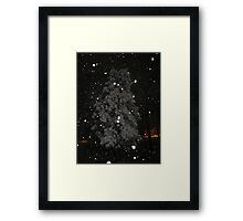 Feb. 19 2012 Snowstorm 59 Framed Print