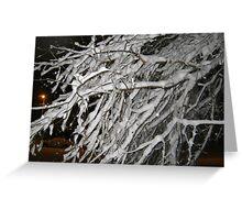 Feb. 19 2012 Snowstorm 60 Greeting Card