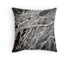 Feb. 19 2012 Snowstorm 60 Throw Pillow