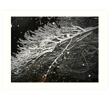 Feb. 19 2012 Snowstorm 61 Art Print