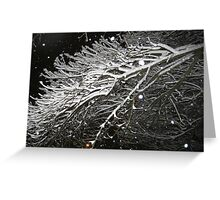 Feb. 19 2012 Snowstorm 61 Greeting Card