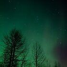 Dancing Lights by mikewheels
