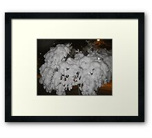 Feb. 19 2012 Snowstorm 66 Framed Print