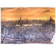 Seoul Skyline from N Seoul Tower Poster
