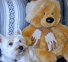 Keeping Warm With Teddy by lynn carter