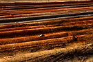 Corrugated rust by clickedbynic