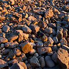 Beach rock field - Boat Harbour Beach, Tasmania by clickedbynic