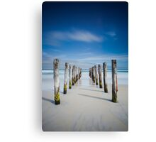 St Clair Beach, Dunedin Canvas Print