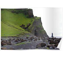 Iceland, Dyrholaey basalt columns Poster