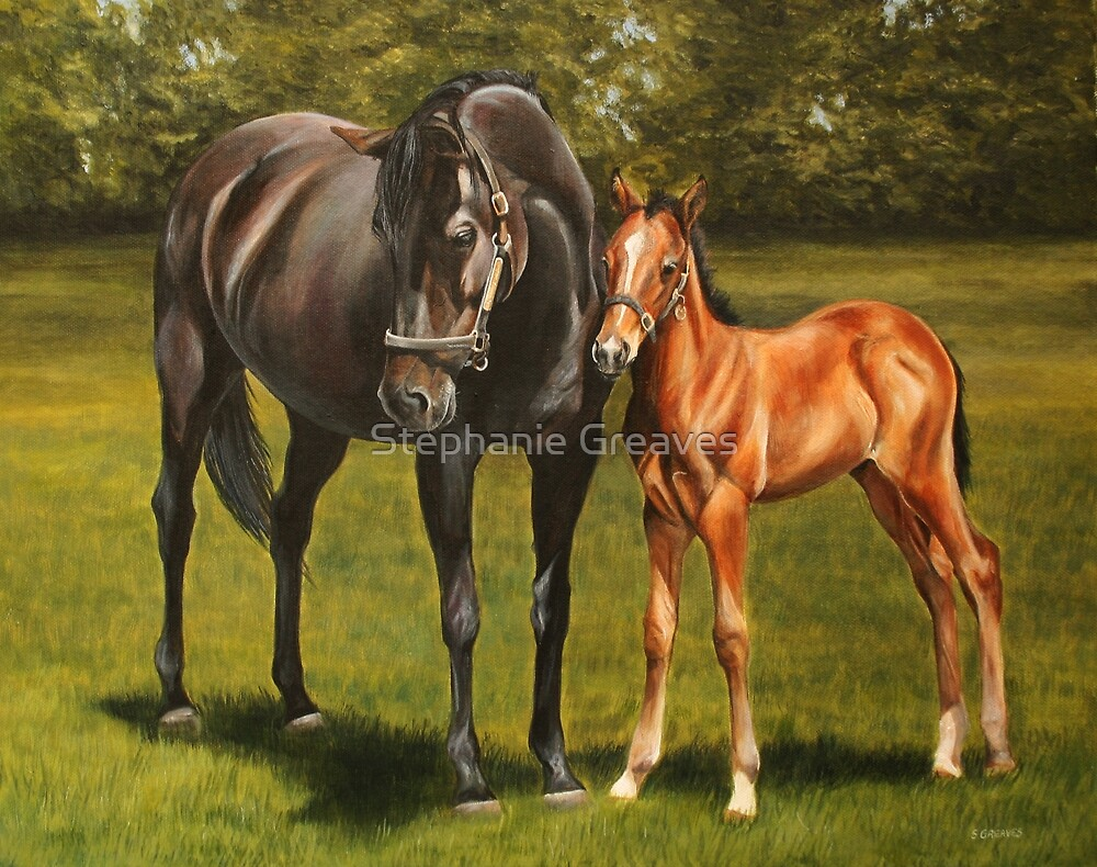 Mare and foal at stud by Stephanie Greaves