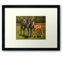 Mare and foal at stud Framed Print