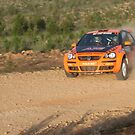 Scouts Rally SA 2015 - ARC Leg 1 - Ashlea James by Stuart Daddow Photography