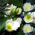 White Flowers Collage in Mirrored Frame by BlueMoonRose