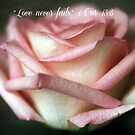 Love Never Fails by Astrid Ewing Photography