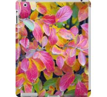 Background of vivid red leaves of autumn bush close-up iPad Case/Skin