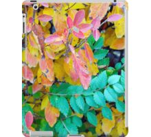 Background of vivid red and green autumn bush leaves iPad Case/Skin