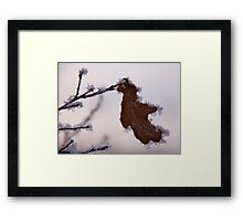 Gingerbread leaf Framed Print