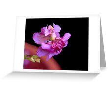 Tiny Dancing Lady Greeting Card