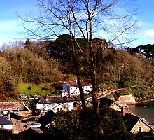 DURGAN VILLAGE - HELFORD RIVER by AndyReeve