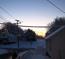 Feb. 19 2012 Snowstorm 68 by dge357