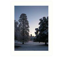 Feb. 19 2012 Snowstorm 74 Art Print