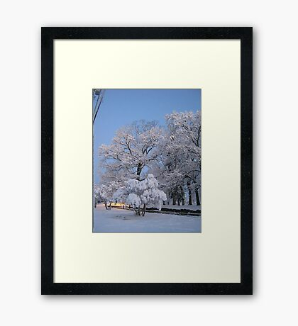 Feb. 19 2012 Snowstorm 75 Framed Print