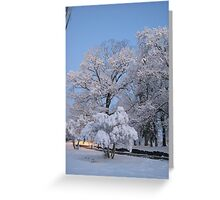 Feb. 19 2012 Snowstorm 75 Greeting Card