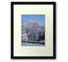 Feb. 19 2012 Snowstorm 76 Framed Print