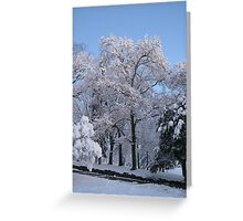 Feb. 19 2012 Snowstorm 77 Greeting Card