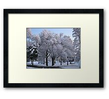 Feb. 19 2012 Snowstorm 78 Framed Print