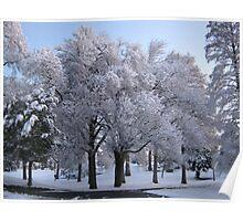 Feb. 19 2012 Snowstorm 78 Poster