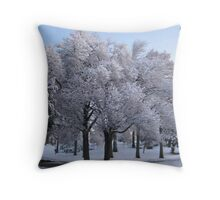 Feb. 19 2012 Snowstorm 78 Throw Pillow