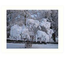 Feb. 19 2012 Snowstorm 79 Art Print