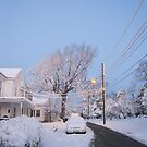 Feb. 19 2012 Snowstorm 80 by dge357