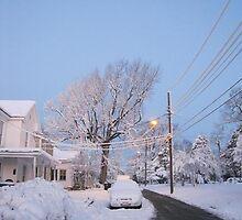 Feb. 19 2012 Snowstorm 80 by dge357