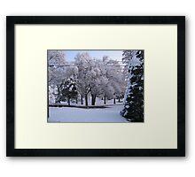 Feb. 19 2012 Snowstorm 84 Framed Print