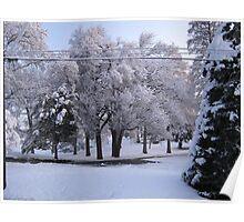 Feb. 19 2012 Snowstorm 84 Poster