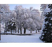Feb. 19 2012 Snowstorm 84 Photographic Print