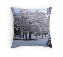 Feb. 19 2012 Snowstorm 84 Throw Pillow