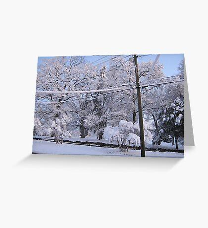 Feb. 19 2012 Snowstorm 85 Greeting Card